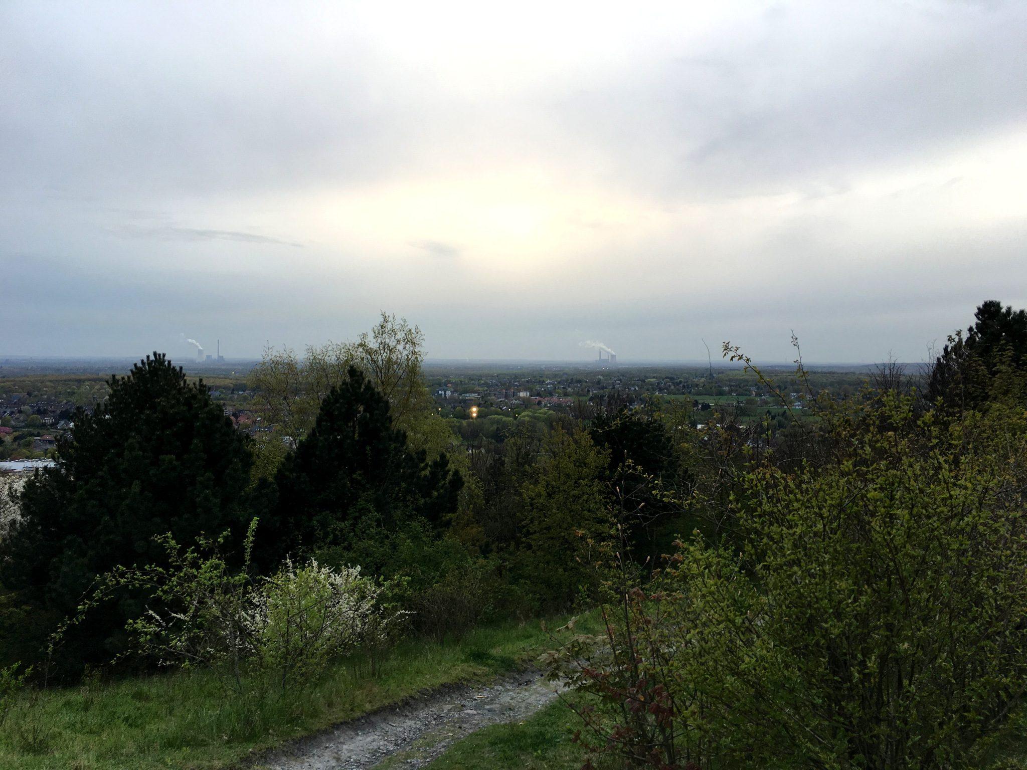 Ein erster Blick über's Ruhrgebiet. Hier hoch oben fliegen bisweilen auch Wanderfalken, von denen es mittlerweile wieder einige Paare in NRW gibt.