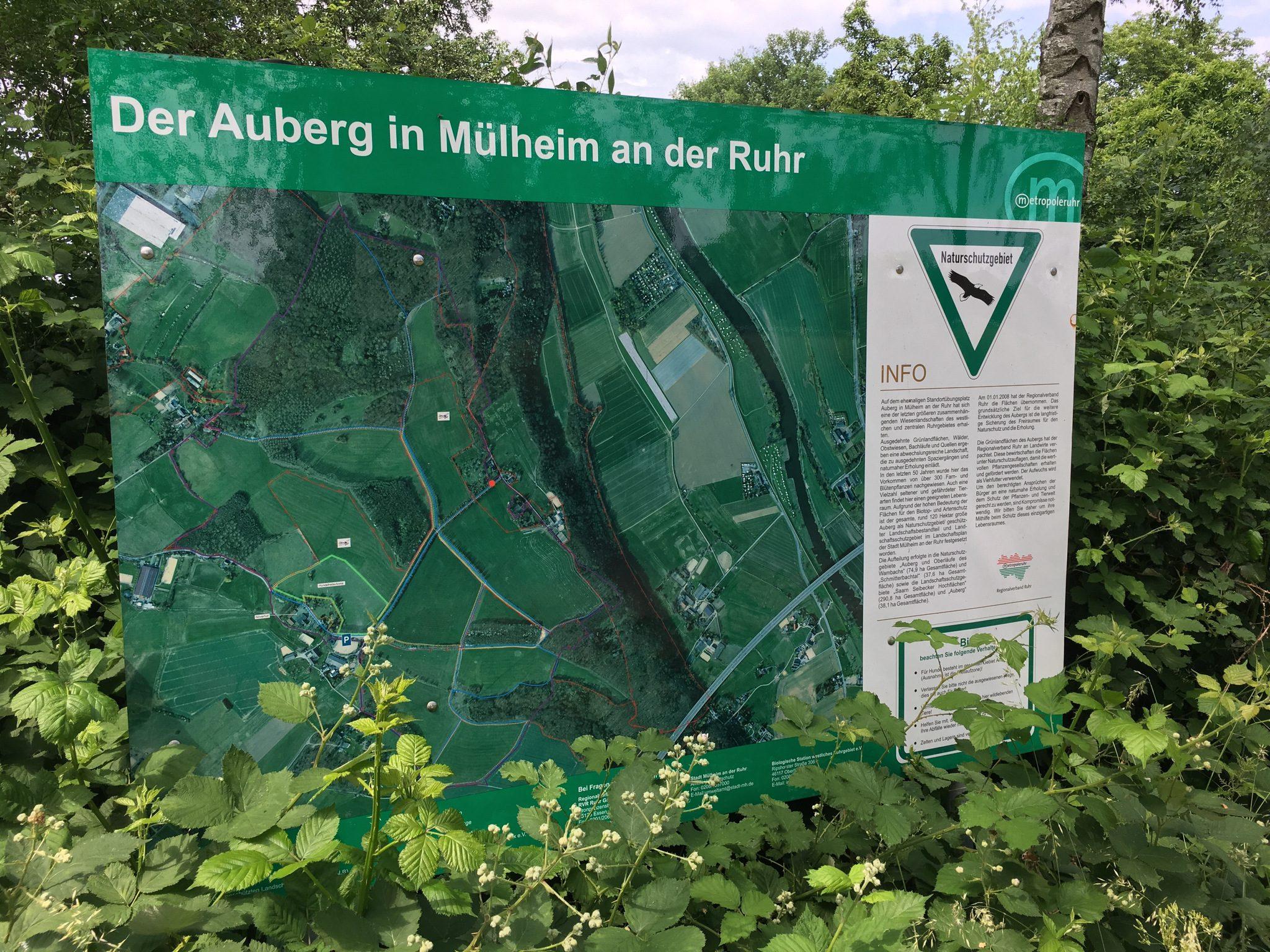 Naturschutzgebiet Auberg.