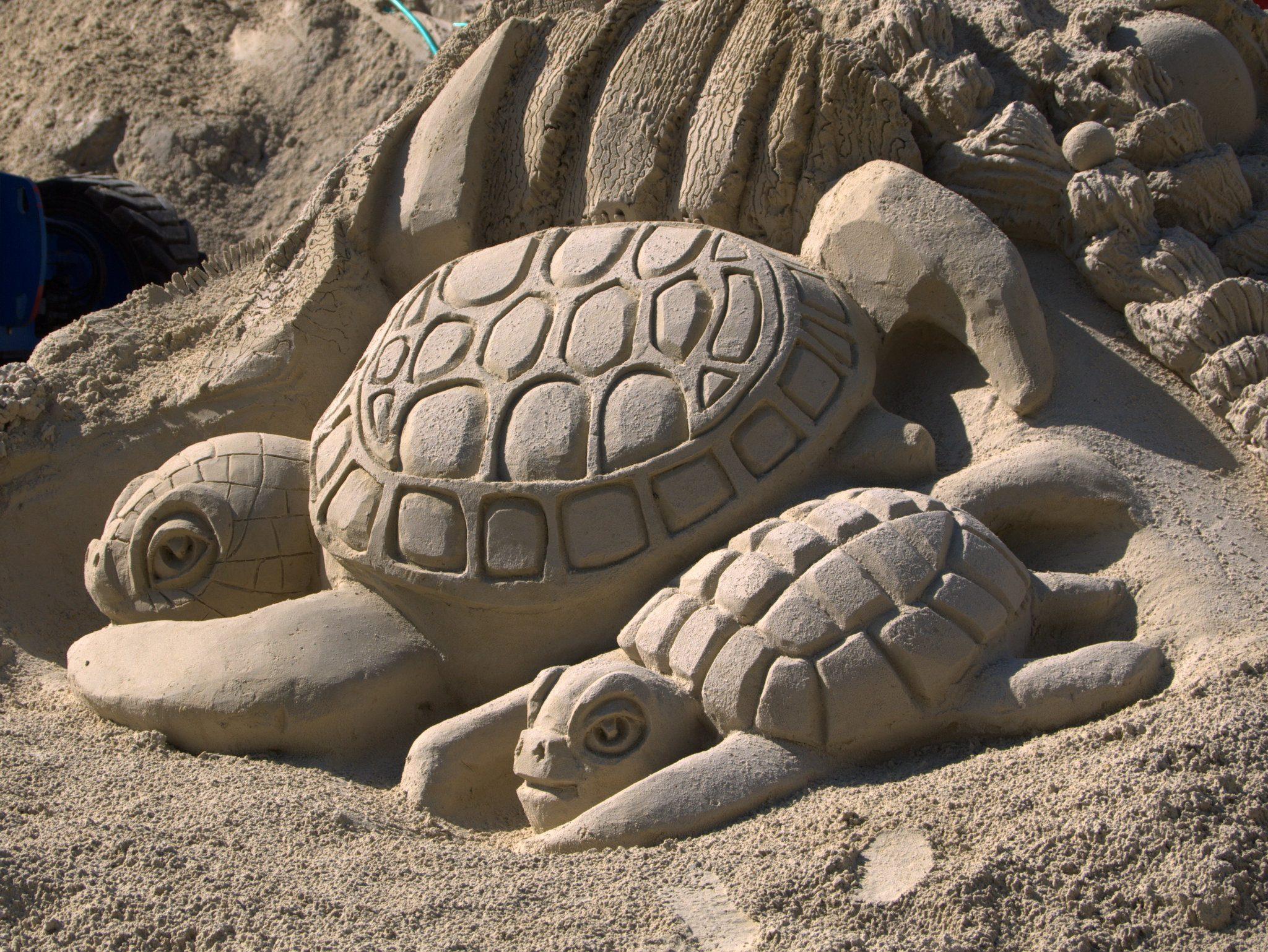 Schildkröten.
