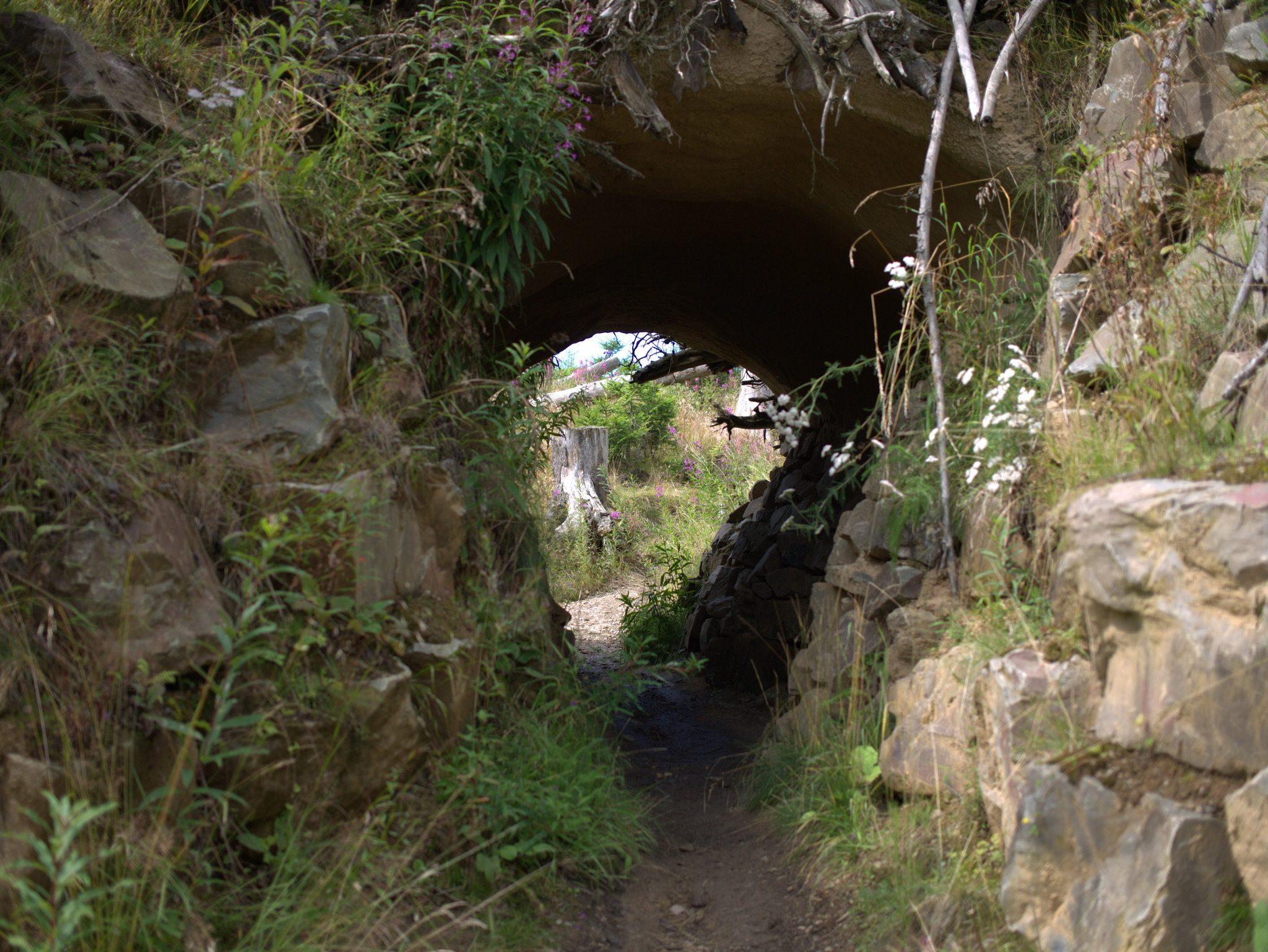 Mal geht es durch einen kleinen Tunnel - den Dachsbau...