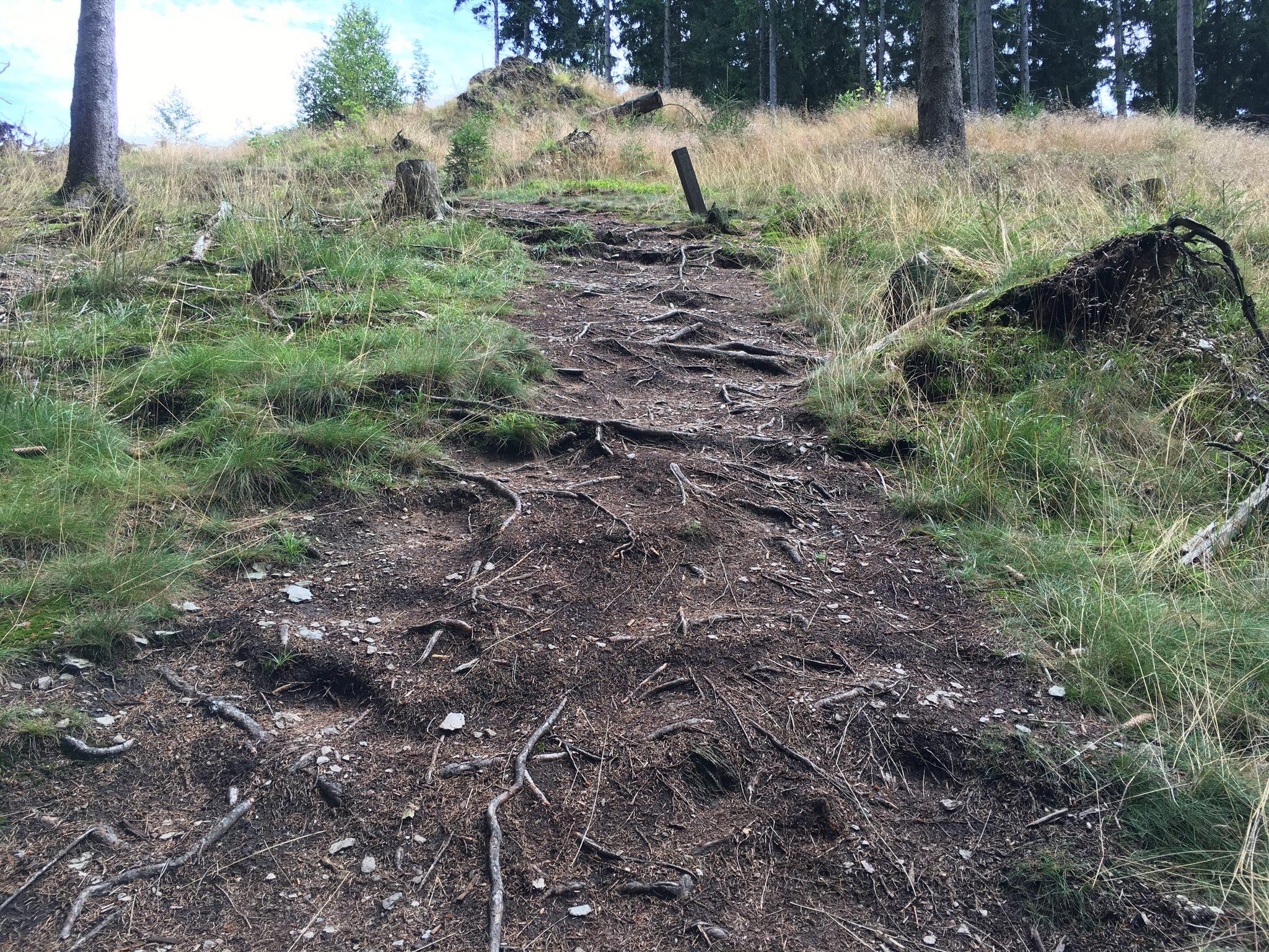 """...mal steil hoch (hier gibt's auch einen kleinen, weniger steilen Weg außenrum - die """"Flach-Etappe"""")..."""