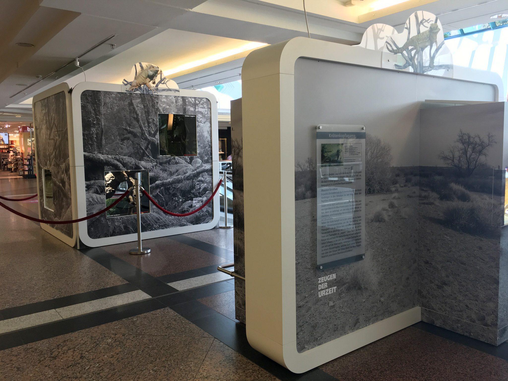 Einer der zwei Ausstellungsflächen im RRZ.