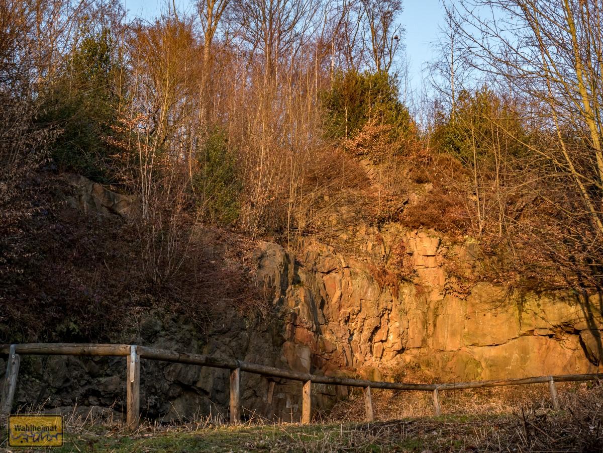 Der Steinbruch im Essener Deilbachtal.