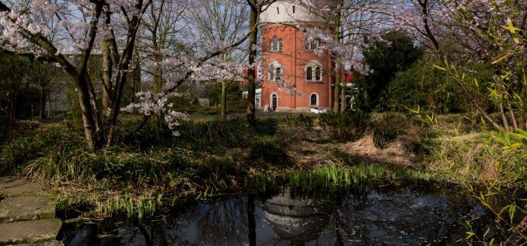 25 Jahre MüGa – Pantoffelgrün und viel Kultur für Mülheim und Besucher