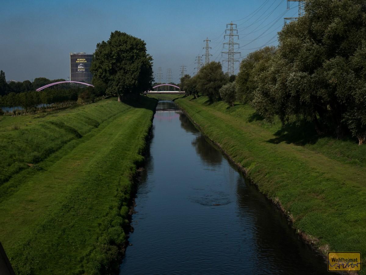 Der Rhein-Herne-Kanal. Hinterm Baum lünkert der Gasometer Oberhausen.