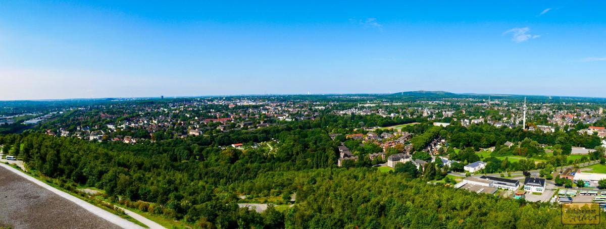 Es ist so grün bei uns im Ruhrgebiet!  Und das ist sogar die Kernzone, noch nicht mal Außen-/Randterrain.