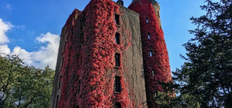 Das Ruhrgebiet im Herbst – meine bunten, luftigen und magischen Lieblingsplätze