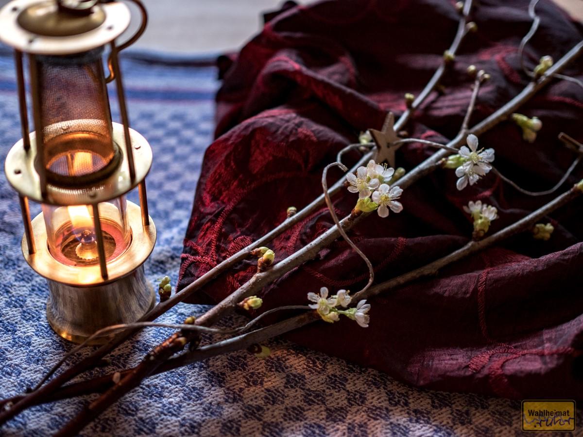 Die Barbarazweige haben ausgetrieben und tragen an Heiligabend Blüten.