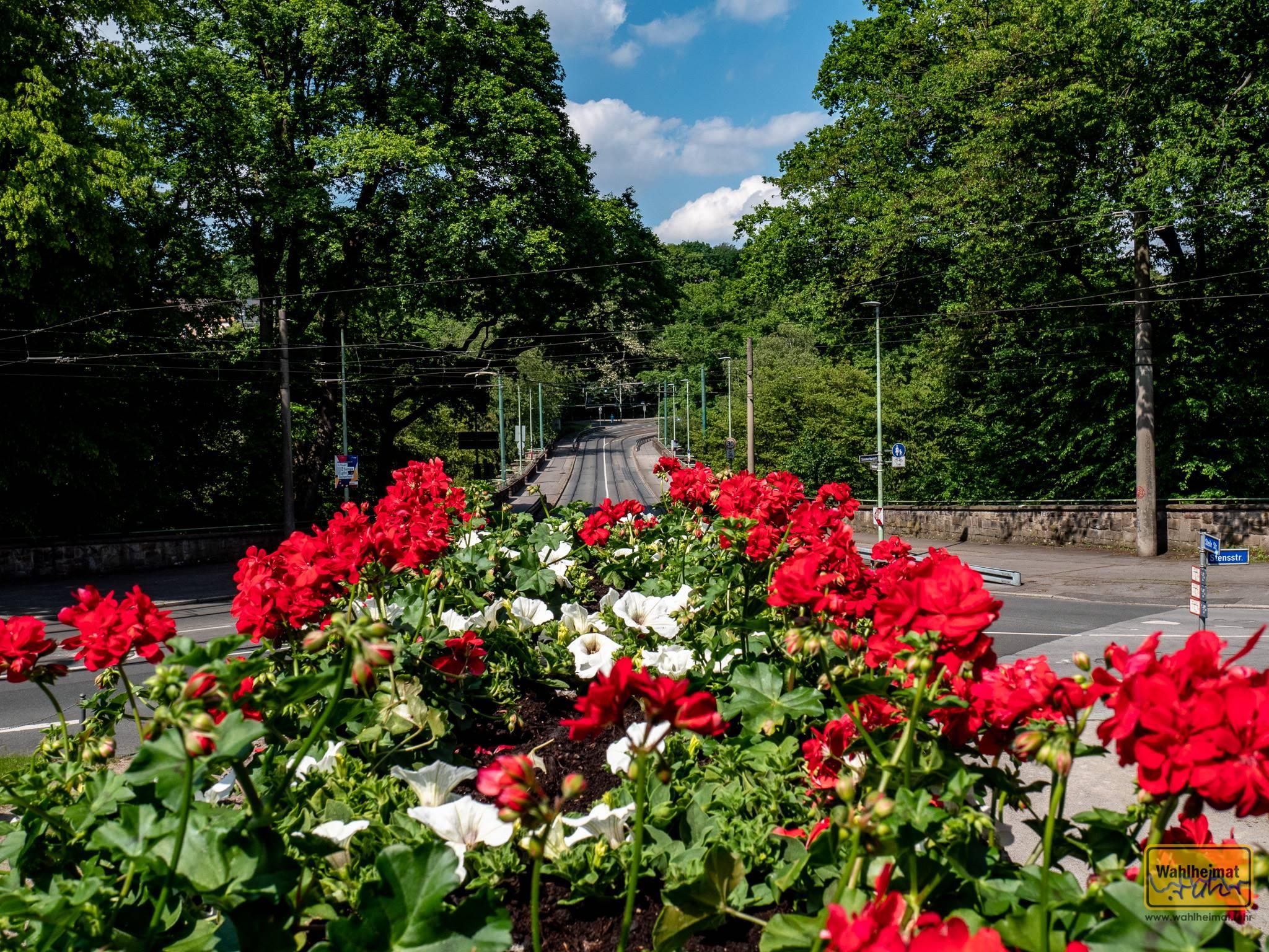 Margarethe Krupp stiftete die erste deutsche Gartenstadt in Essen. Zwischen 1909 und 1938 entstand dieses Schmuckstück mitten im Ruhrgebiet.