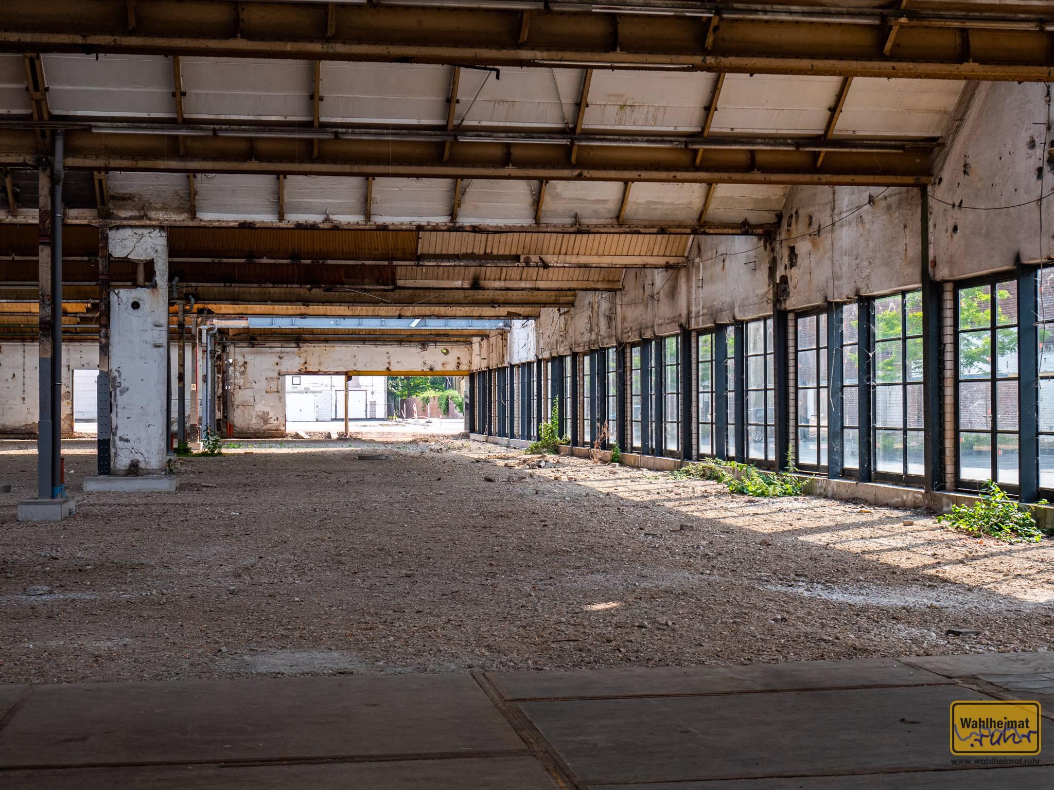 Das Foto fängt nur einen Teil der riesigen Färberhalle der Verseidag ein. Man sieht die Shed-Dach-Konstruktion hier auch von unten.