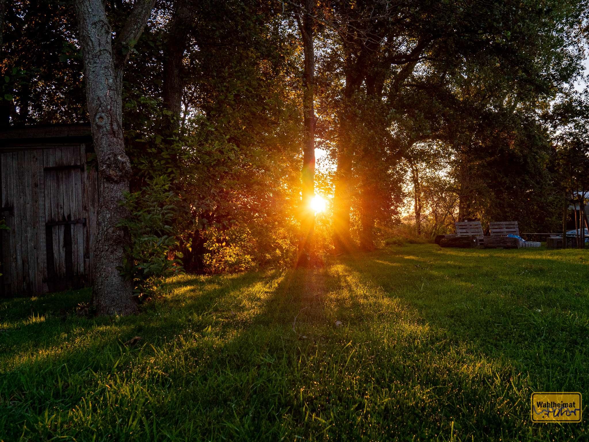 Auf dieser Wiese gibt's abends Lagerfeuer und Stockbrot - morgens tolle Sonnenaufgänge!
