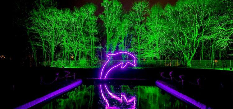 Essen, Gruga-Park: Parkleuchten 2020