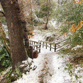 Mülheim an der Ruhr – zweiter Schnee 2021